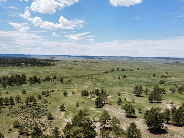 0003 County Road 77, Calhan, CO 80808 (#8825363) :: Re/Max Structure