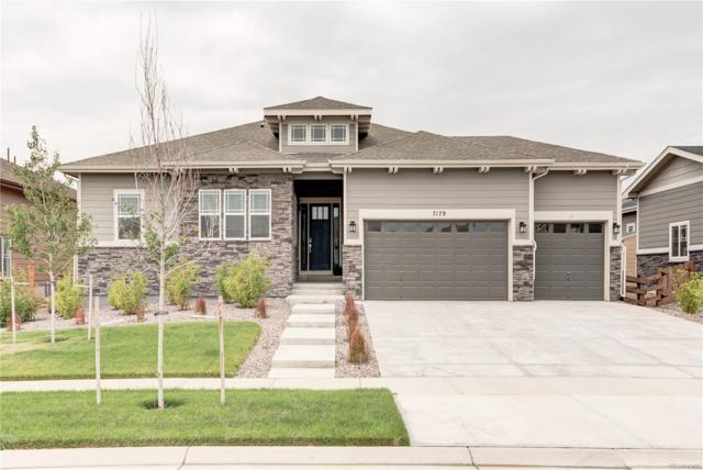 7179 S Riverwood Way, Aurora, CO 80016 (MLS #8828186) :: Kittle Real Estate