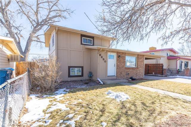 6690 Albion Street, Commerce City, CO 80022 (MLS #8830356) :: 8z Real Estate