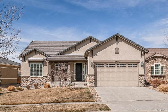 4825 Flash Court, Broomfield, CO 80023 (#8831007) :: The Peak Properties Group