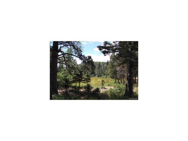 Tbd Tres Valles West, La Veta, CO 81055 (MLS #8831854) :: 8z Real Estate