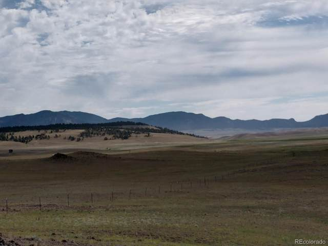 County Rd 118, Guffey, CO 80820 (#8832134) :: The DeGrood Team