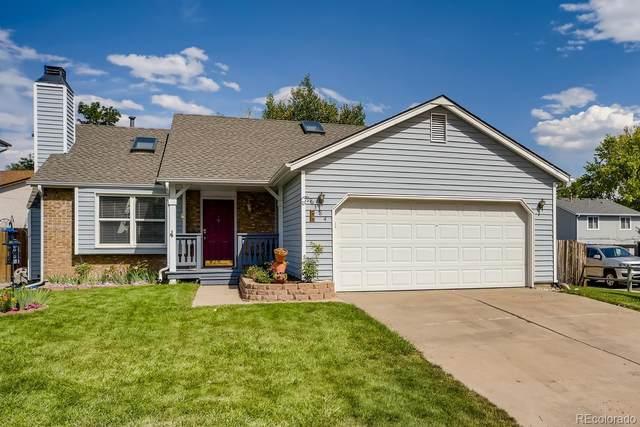 8384 Prairie Clover Way, Parker, CO 80134 (#8834865) :: Kimberly Austin Properties
