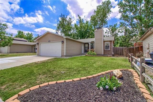 8711 Apache Plume Drive, Parker, CO 80134 (#8836538) :: Kimberly Austin Properties
