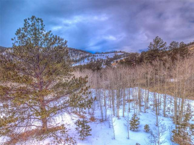 28501 Highway 24, Lake George, CO 80827 (#8837898) :: James Crocker Team