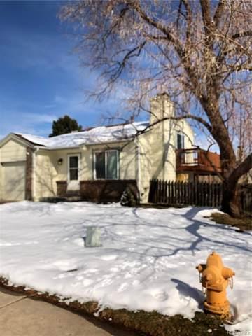 5684 S Zang Street, Littleton, CO 80127 (MLS #8842793) :: 8z Real Estate