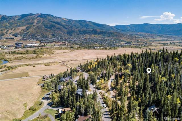 36879 Tree Haus Drive, Steamboat Springs, CO 80487 (#8843471) :: The Brokerage Group