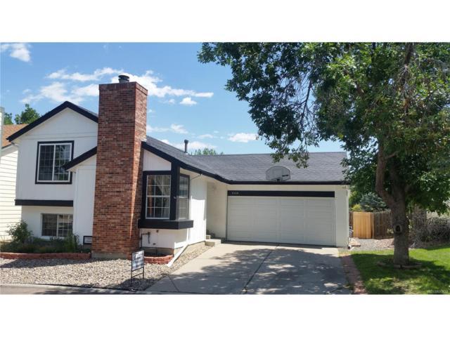 9208 Butterwood Court, Highlands Ranch, CO 80126 (MLS #8848248) :: 8z Real Estate