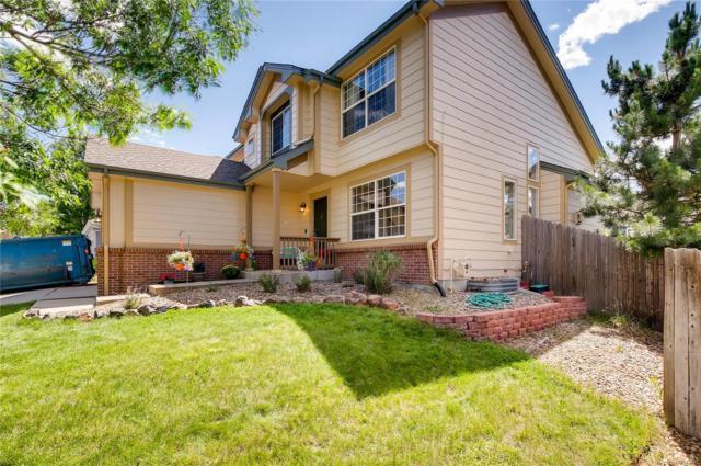 1433 Scott Canyon Lane, Castle Rock, CO 80104 (MLS #8849204) :: 8z Real Estate