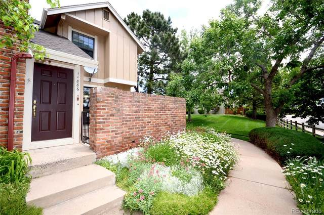 11886 Elk Head Range Road, Littleton, CO 80127 (MLS #8851556) :: Keller Williams Realty