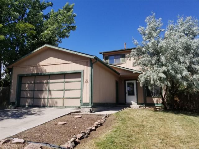 4763 S Taft Street, Morrison, CO 80465 (#8853096) :: Wisdom Real Estate
