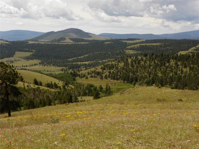 125.40 Acres, Saguache, CO 81249 (#8856105) :: The DeGrood Team