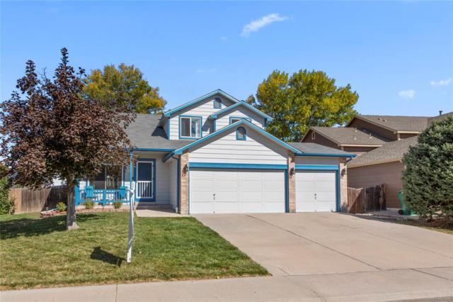 13304 Umatilla Street, Westminster, CO 80234 (#8857575) :: Sellstate Realty Pros