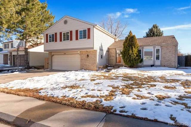 4080 E 115th Place, Thornton, CO 80233 (#8857682) :: HergGroup Denver
