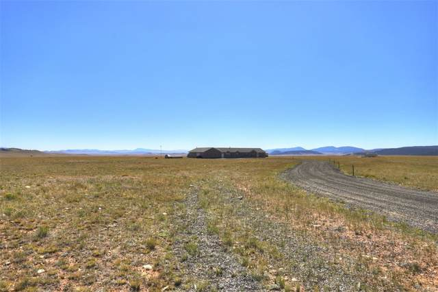 3905 Bare Trail, Hartsel, CO 80449 (#8857960) :: The DeGrood Team