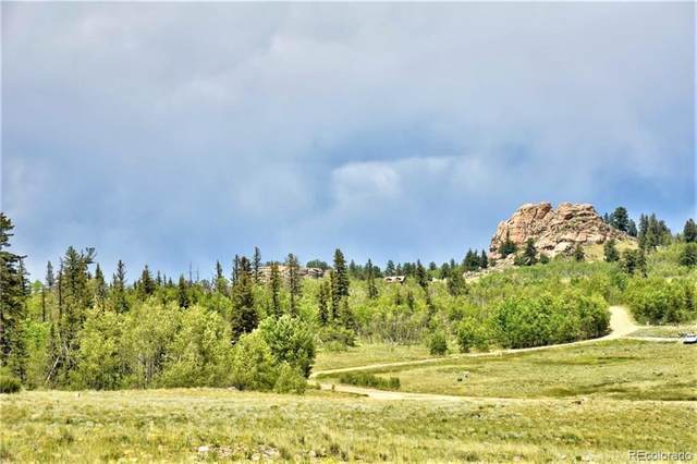 197 Swallow Rock Trail, Como, CO 80432 (#8858303) :: Mile High Luxury Real Estate