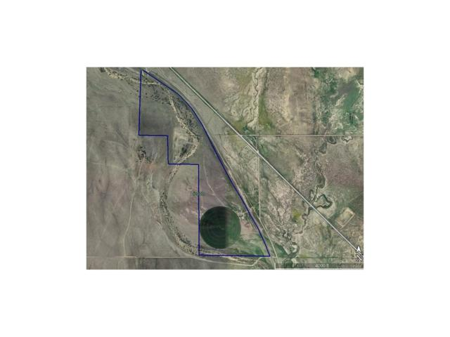 37301 County Road 39, Hugo, CO 80821 (#8858666) :: The Galo Garrido Group