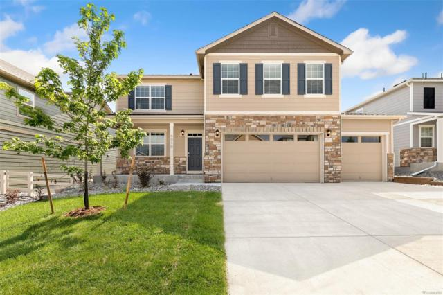 6010 High Timber Circle, Castle Rock, CO 80104 (#8859574) :: The Healey Group