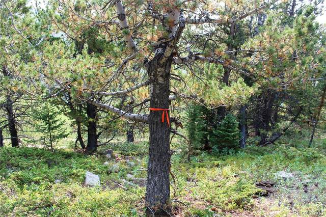 10 Arapahoe Ridge, Black Hawk, CO 80422 (MLS #8859943) :: Wheelhouse Realty