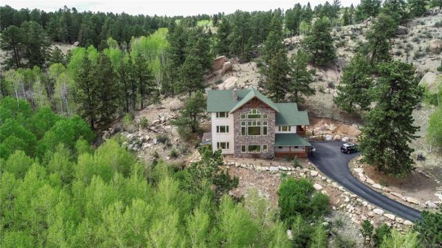 71 Crestone Circle, Florissant, CO 80816 (#8864074) :: Wisdom Real Estate