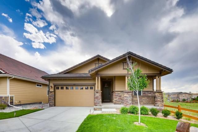 10198 Nadine Avenue, Parker, CO 80134 (#8865112) :: The Galo Garrido Group