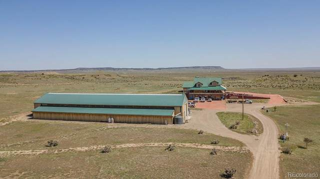20000 Walking Stick Road, Trinidad, CO 81082 (MLS #8865698) :: Bliss Realty Group
