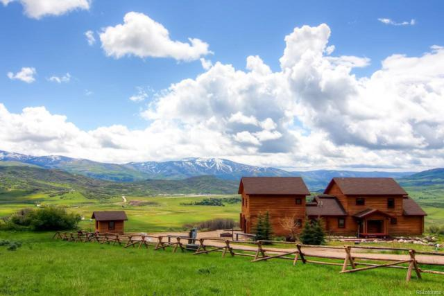 42391 Deer Road, Steamboat Springs, CO 80487 (#8866369) :: The Griffith Home Team