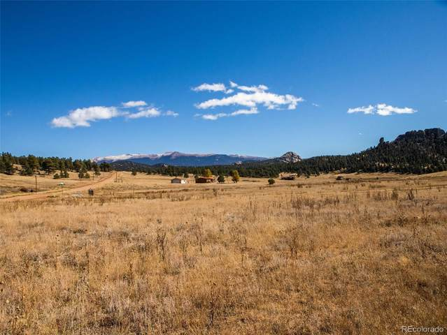 87 S Deer Mountain Road, Florissant, CO 80816 (#8868521) :: The DeGrood Team
