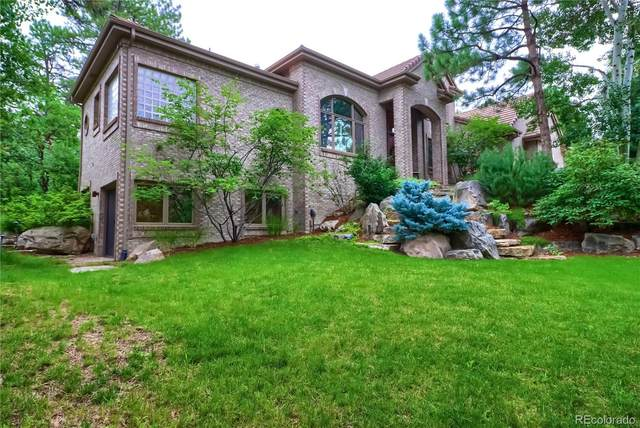 813 Moffat Court, Castle Rock, CO 80108 (#8870981) :: The Colorado Foothills Team | Berkshire Hathaway Elevated Living Real Estate