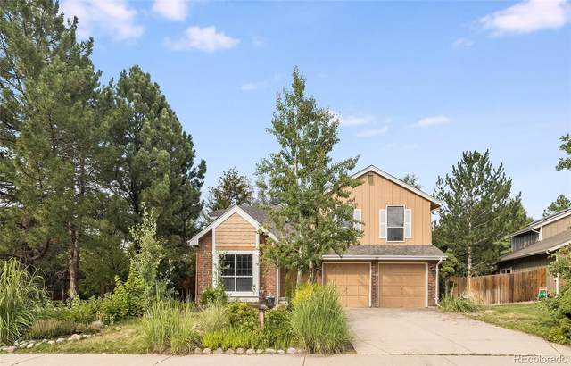 189 Dover Court, Castle Pines, CO 80108 (#8872924) :: The DeGrood Team