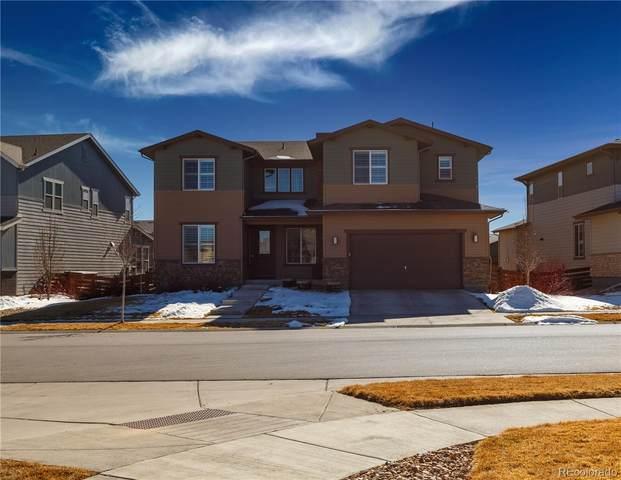 377 Polaris Circle, Erie, CO 80516 (#8873108) :: Venterra Real Estate LLC