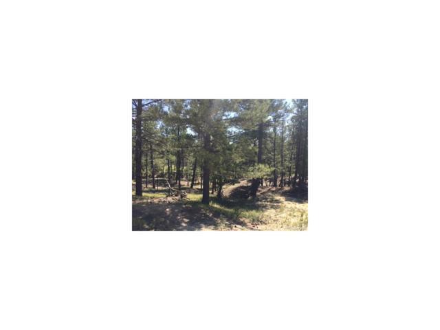 23750 Jasper Trail, Deer Trail, CO 80105 (MLS #8875031) :: 8z Real Estate