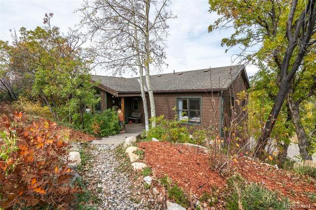 428 Blue Sage Circle, Steamboat Springs, CO 80487 (#8875949) :: The DeGrood Team