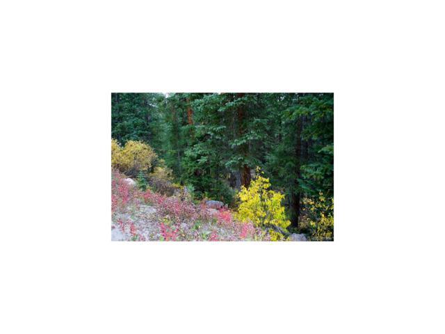 177 Summit County Road 674 Road, Breckenridge, CO 80424 (MLS #8876155) :: 8z Real Estate