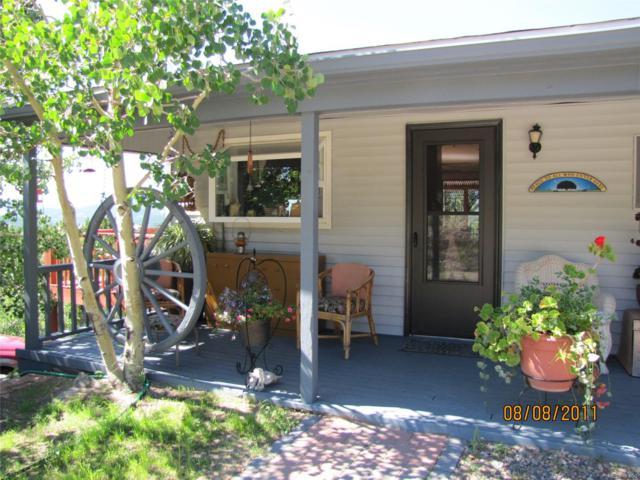 162 Elk Place, Black Hawk, CO 80422 (#8877003) :: The DeGrood Team
