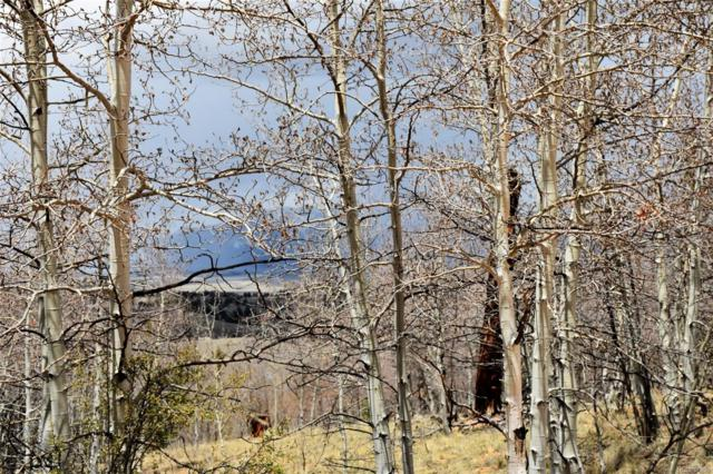2468 Redhill Road, Fairplay, CO 80440 (MLS #8877186) :: Kittle Real Estate