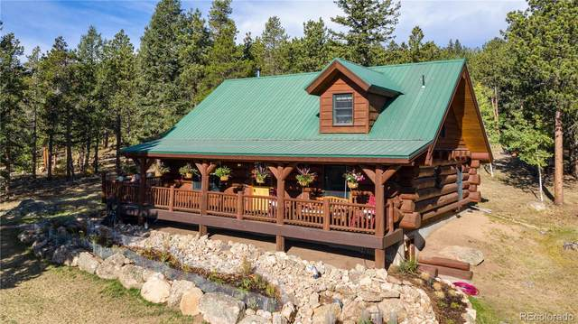 54 Lynx Drive, Ward, CO 80481 (#8878118) :: Chateaux Realty Group
