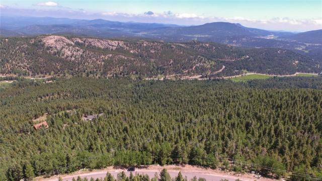 10208 Christopher Drive, Conifer, CO 80433 (#8878906) :: The Heyl Group at Keller Williams