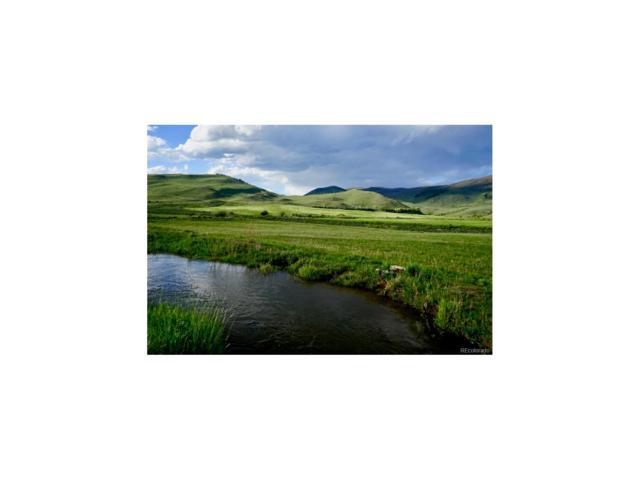 2057 County Road 24, Kremmling, CO 80459 (#8880557) :: Wisdom Real Estate