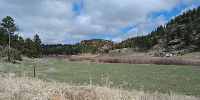 386 Ranch View Drive, Florissant, CO 80816 (#8881439) :: The Heyl Group at Keller Williams