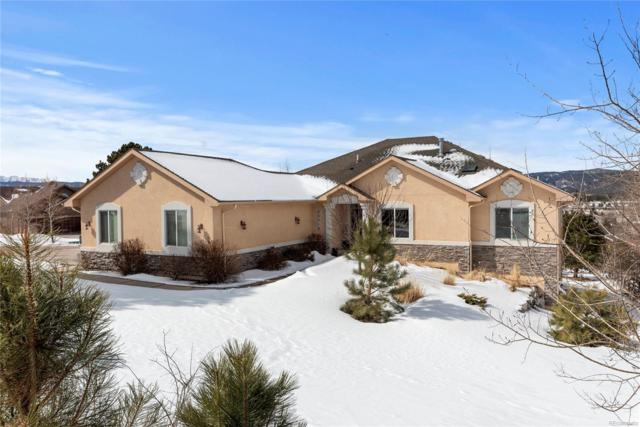20316 High Pines Drive, Monument, CO 80132 (#8883779) :: Wisdom Real Estate