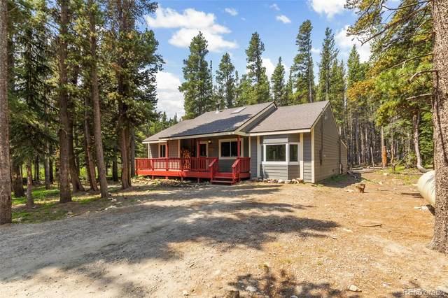 603 Silver Creek Road, Idaho Springs, CO 80452 (#8884102) :: The Colorado Foothills Team   Berkshire Hathaway Elevated Living Real Estate