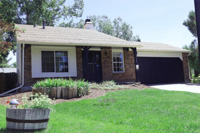 17732 Junegrass Place, Parker, CO 80134 (#8884665) :: The Dixon Group
