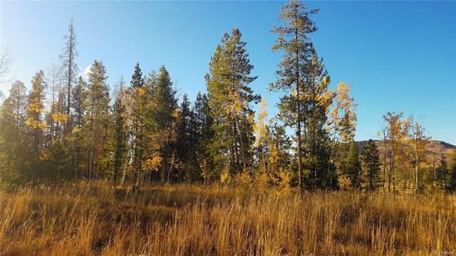 33335 Appaloosa Way, Oak Creek, CO 80467 (#8884841) :: The Margolis Team