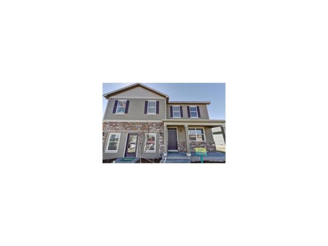 1784 Mcmurdo Trail, Castle Rock, CO 80108 (MLS #8886209) :: 8z Real Estate