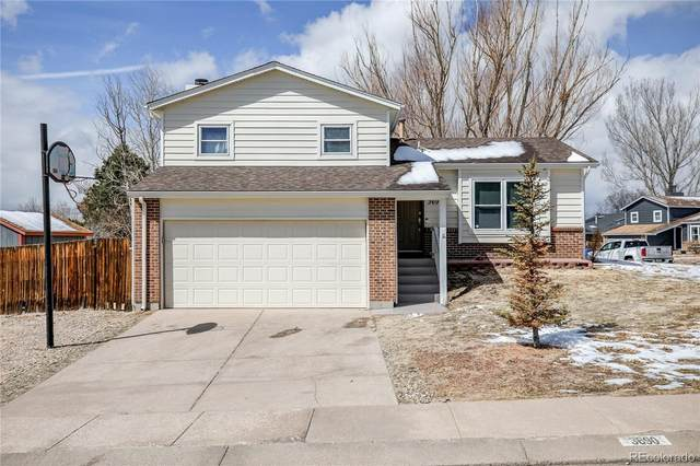 3690 Brisbane Drive, Colorado Springs, CO 80920 (#8887627) :: iHomes Colorado