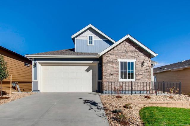 12685 W Montane Drive, Broomfield, CO 80021 (MLS #8890942) :: Kittle Real Estate