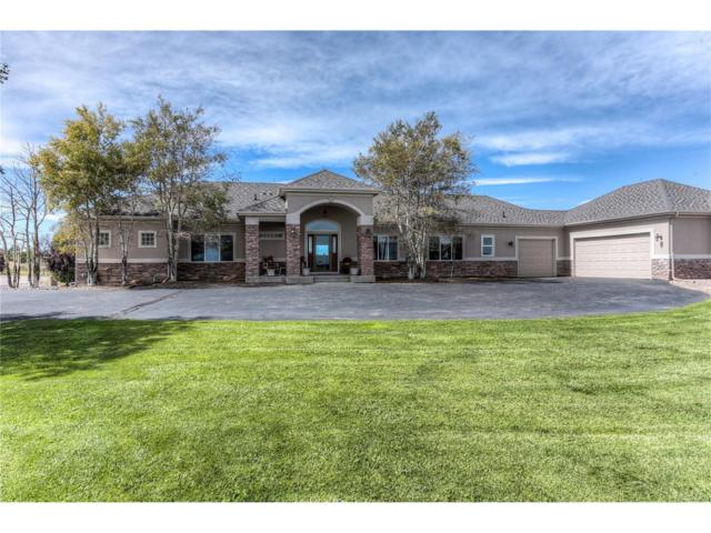 9653 Summit Ridge Place, Parker, CO 80138 (MLS #8894418) :: 8z Real Estate