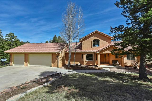 18040 Forest View Road, Monument, CO 80132 (#8895662) :: Harling Real Estate