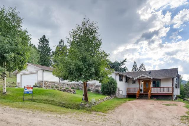 101 Louis Road, Bailey, CO 80421 (MLS #8896944) :: 8z Real Estate